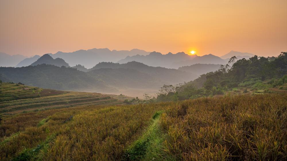 Sonnenaufgang in Pu Luong, Vietnam